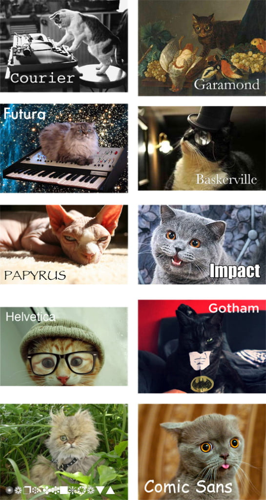 If cats were fonts