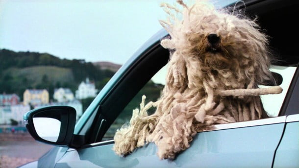 Volkswagen Woofwagen dogs advert 2013