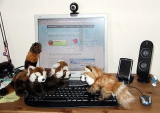 Mozilla Firefox 3 e tre Firefox